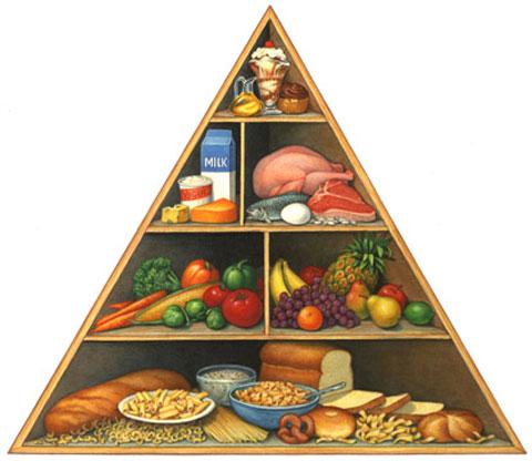 Anketa o prehrani za starše