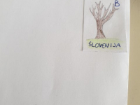 voscilnice1-30